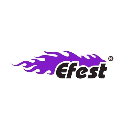 Shenzhen Fest Technology Co.,Ltd